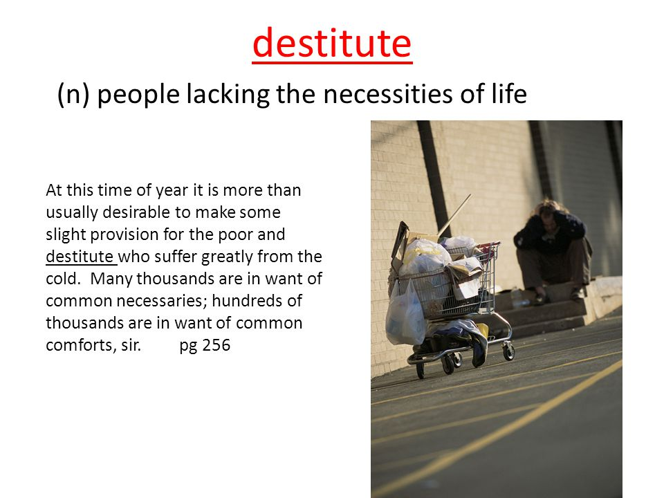 destitute (n) people lacking the necessities of life
