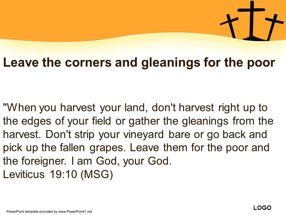 Leave the corners and gleanings for the poor