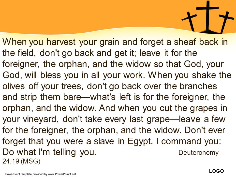 When you harvest your grain and forget a sheaf back in the field, don t go back and get it; leave it for the foreigner, the orphan, and the widow so that God, your God, will bless you in all your work.