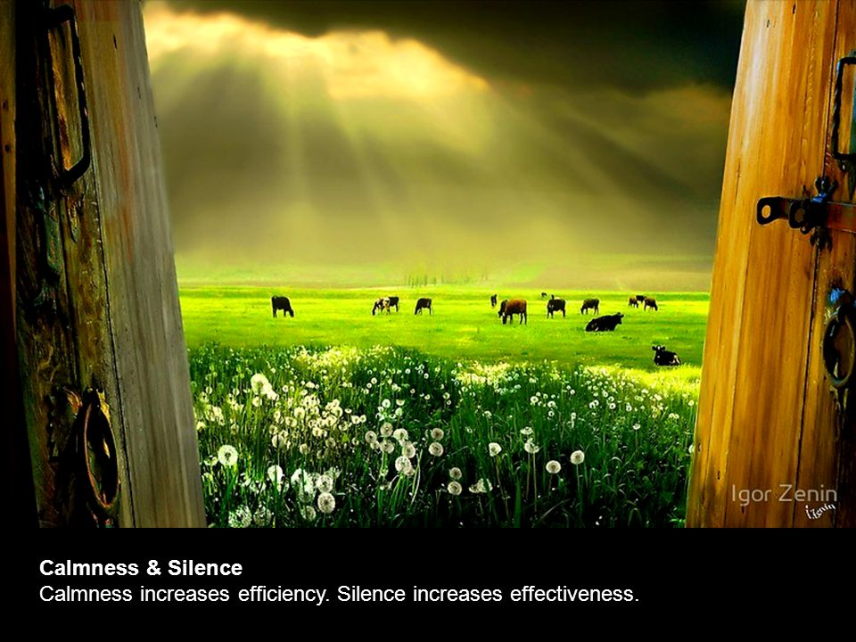 Calmness & Silence Calmness increases efficiency. Silence increases effectiveness.