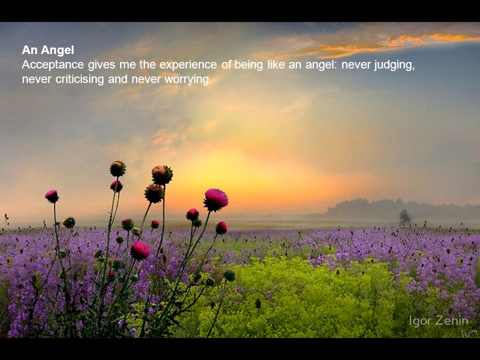 An Angel Acceptance gives me the experience of being like an angel: never judging, never criticising and never worrying.