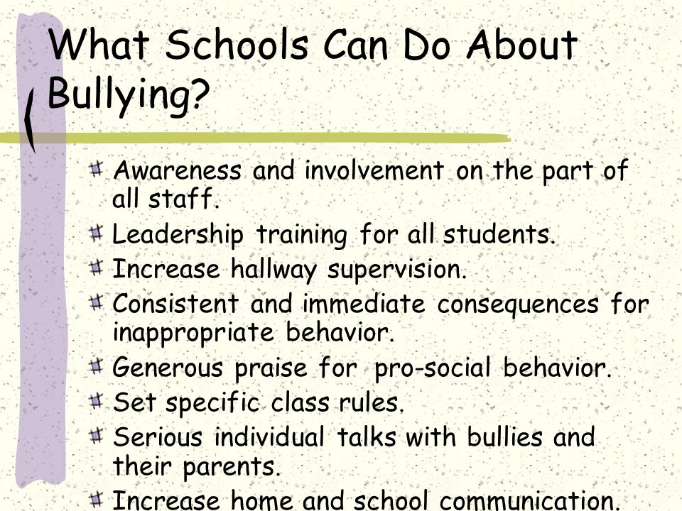 What Schools Can Do About Bullying