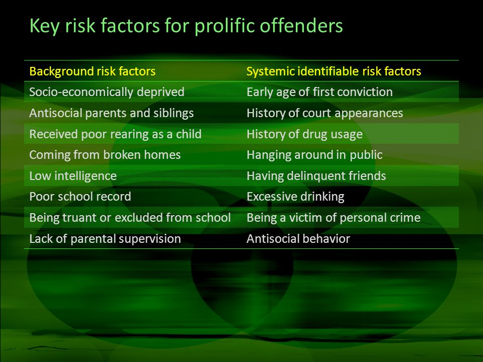 Key risk factors for prolific offenders