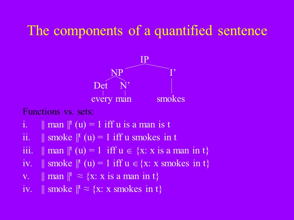 The components of a quantified sentence