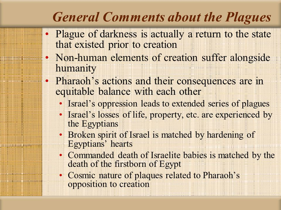 General Comments about the Plagues