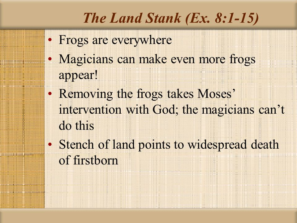 The Land Stank (Ex. 8:1-15) Frogs are everywhere
