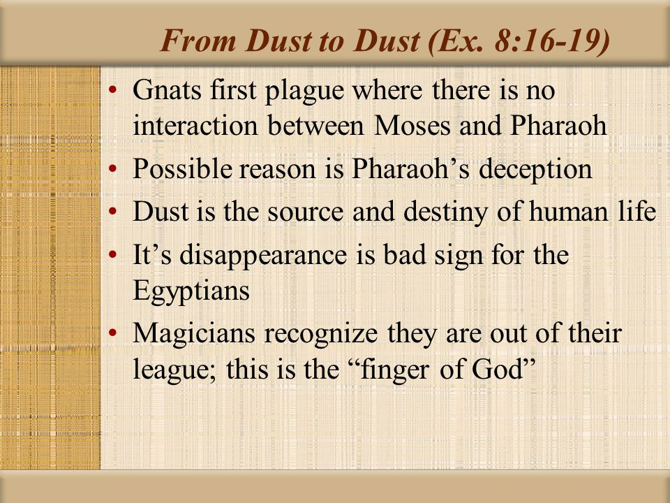 From Dust to Dust (Ex. 8:16-19)