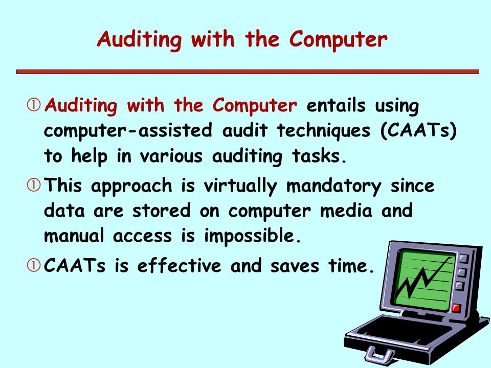 Auditing with the Computer