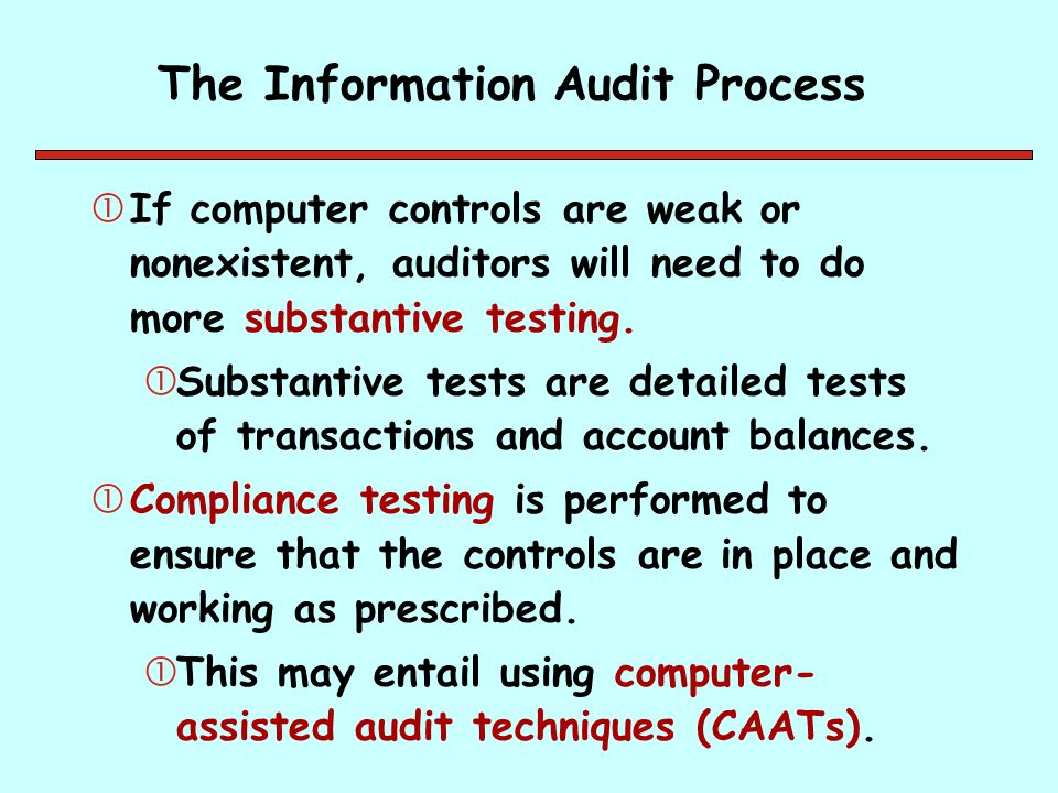 The Information Audit Process