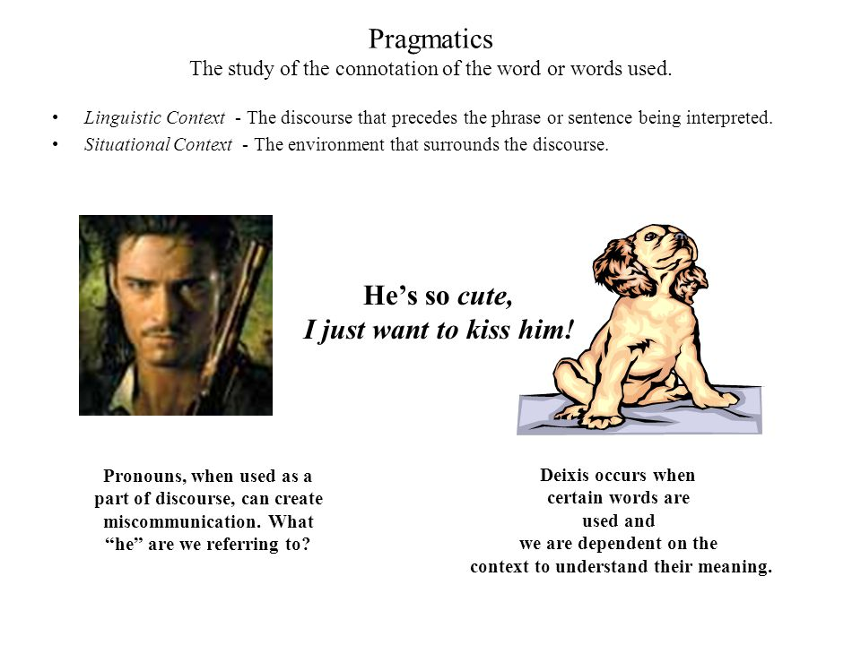 Pragmatics The study of the connotation of the word or words used.