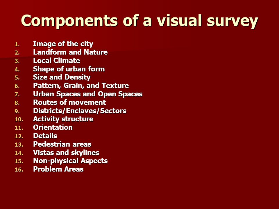 Components of a visual survey