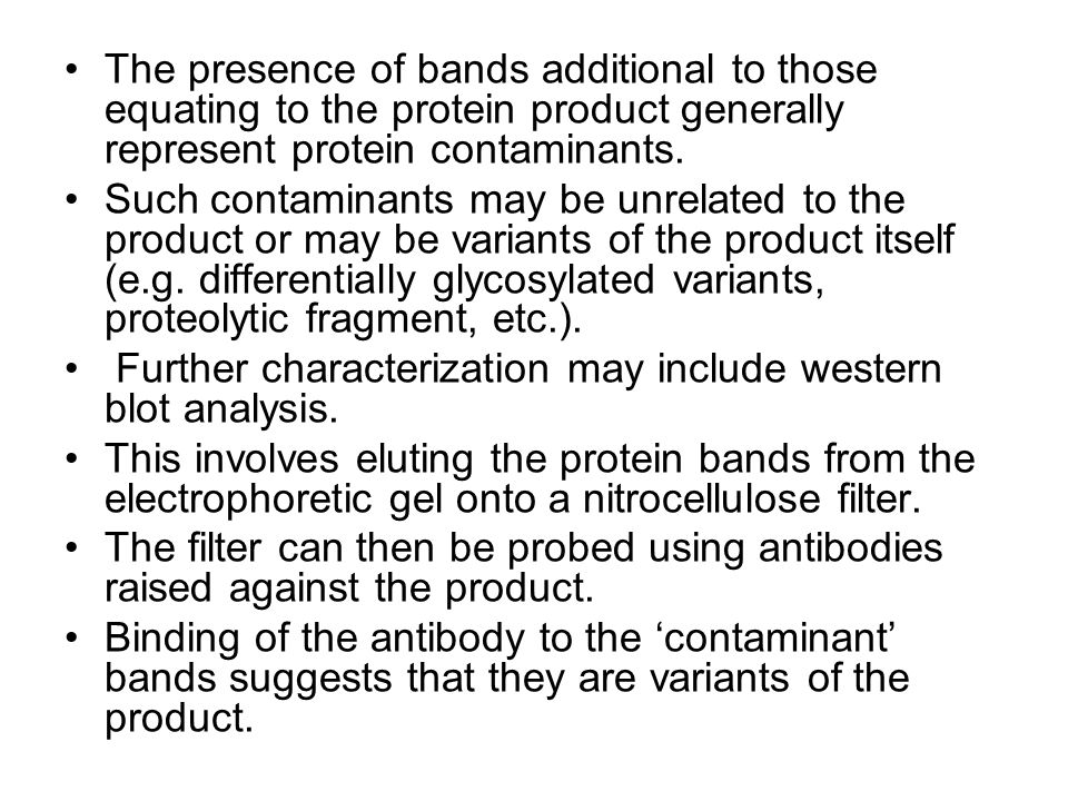 The presence of bands additional to those equating to the protein product generally represent protein contaminants.