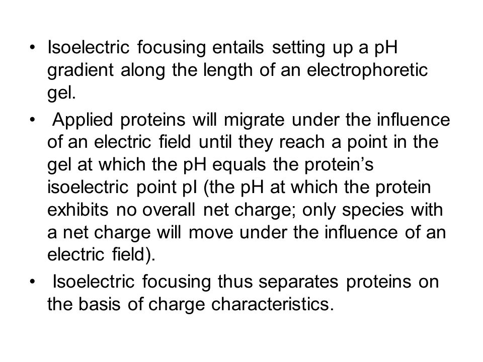 Isoelectric focusing entails setting up a pH gradient along the length of an electrophoretic gel.