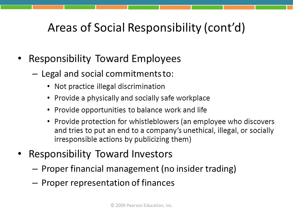 Areas of Social Responsibility (cont'd)