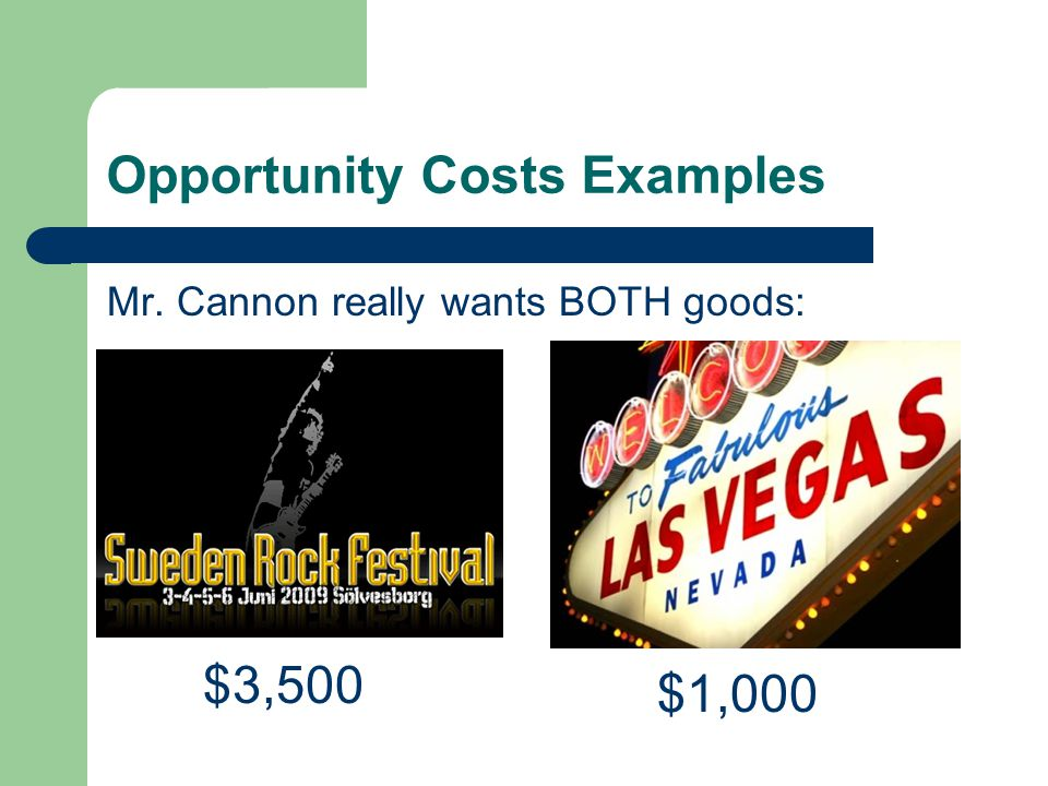 Opportunity Costs Examples