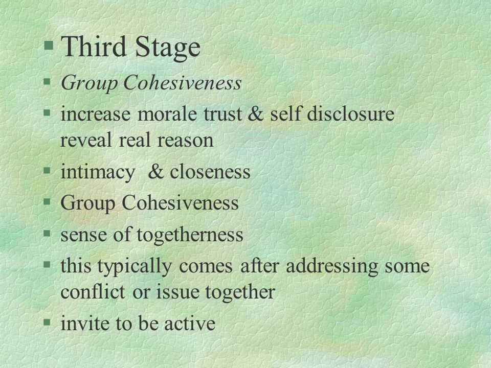 Third Stage Group Cohesiveness