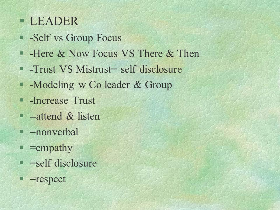 LEADER -Self vs Group Focus -Here & Now Focus VS There & Then