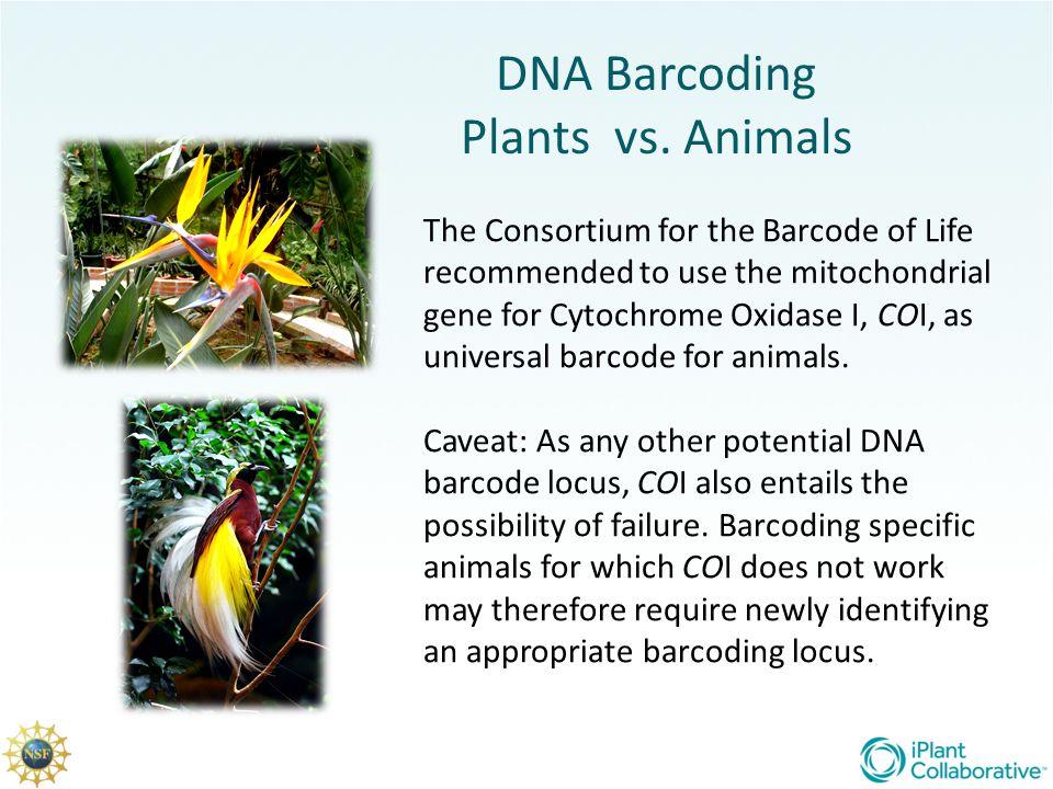 DNA Barcoding Plants vs. Animals