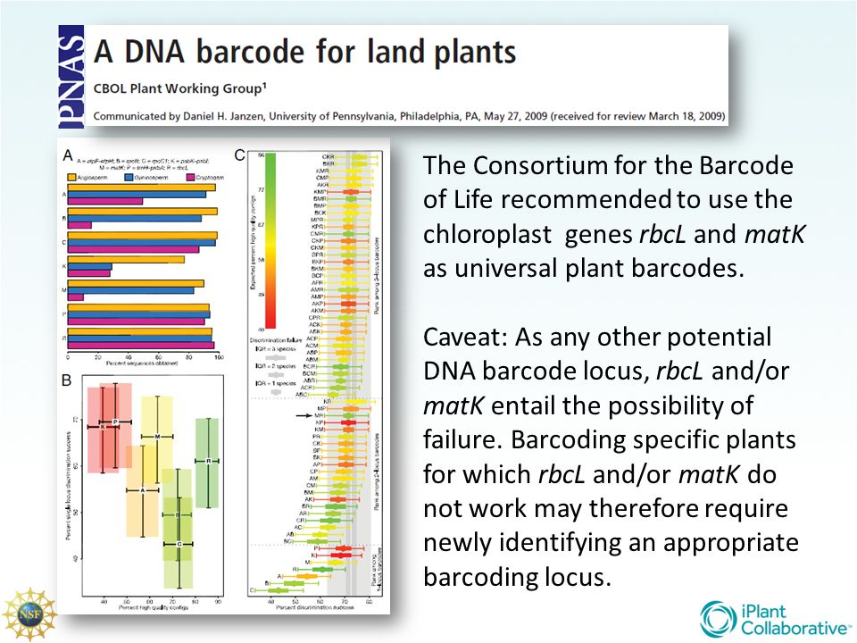 The Consortium for the Barcode of Life recommended to use the chloroplast genes rbcL and matK as universal plant barcodes.