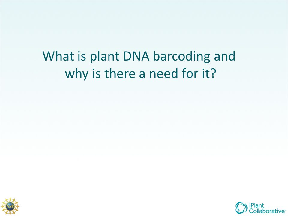 What is plant DNA barcoding and why is there a need for it