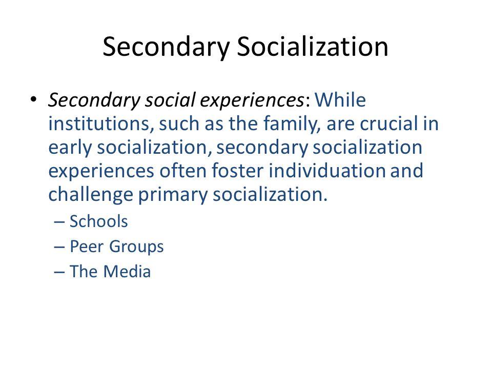 Secondary Socialization