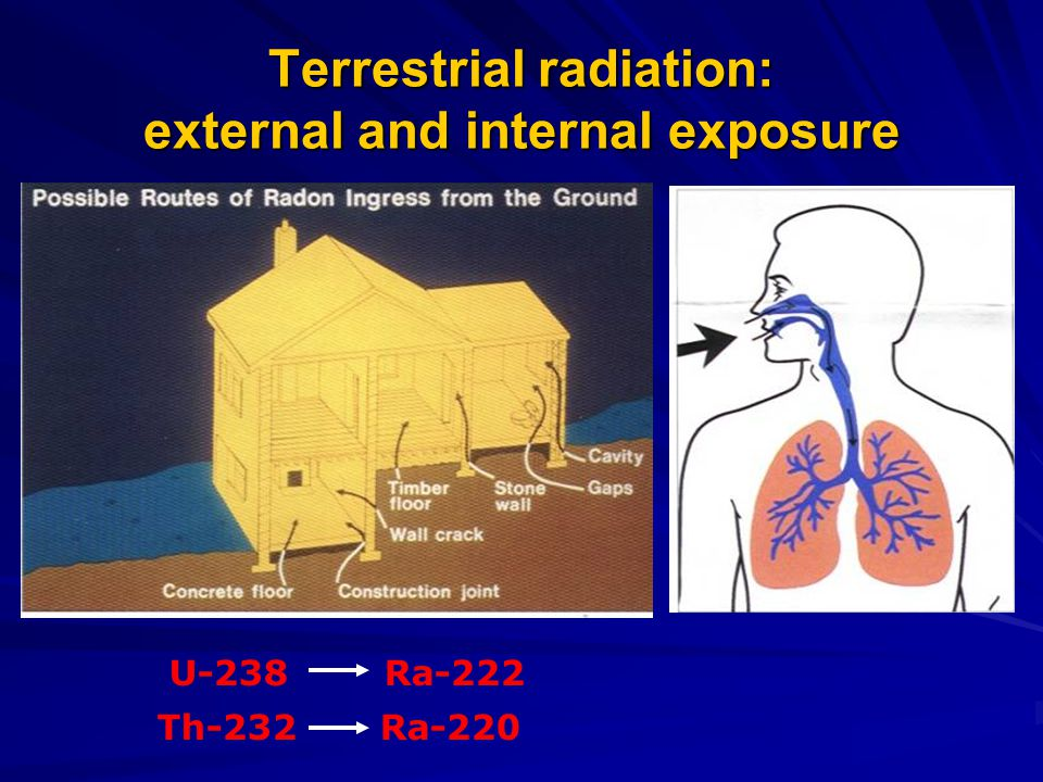 Terrestrial radiation: external and internal exposure