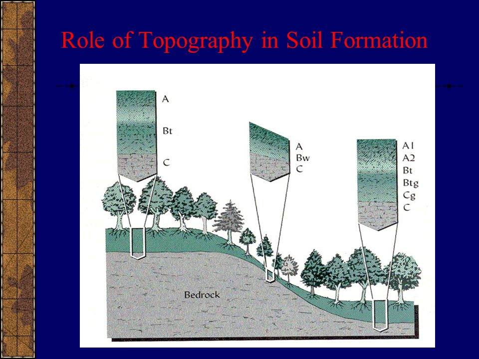 Role of Topography in Soil Formation