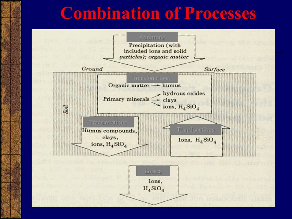 Combination of Processes
