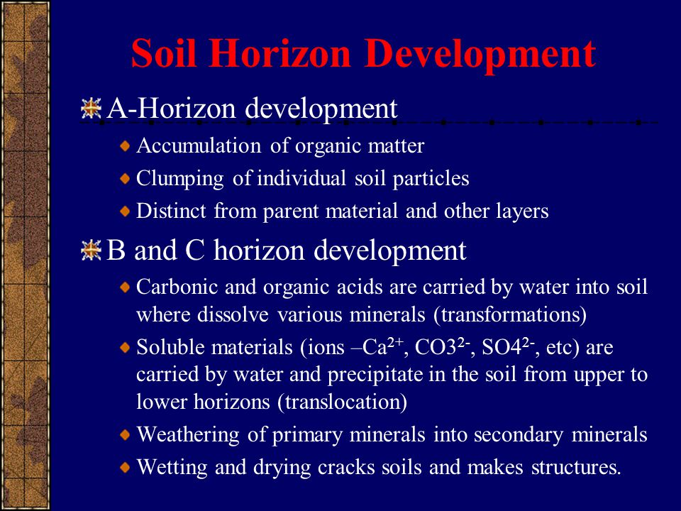 Soil Horizon Development