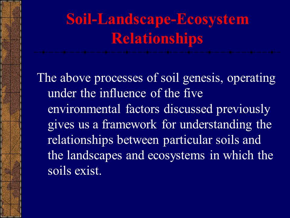 Soil-Landscape-Ecosystem Relationships