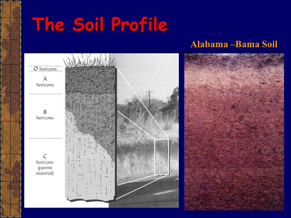 Introductory soils ppt video online download for Soil profile video