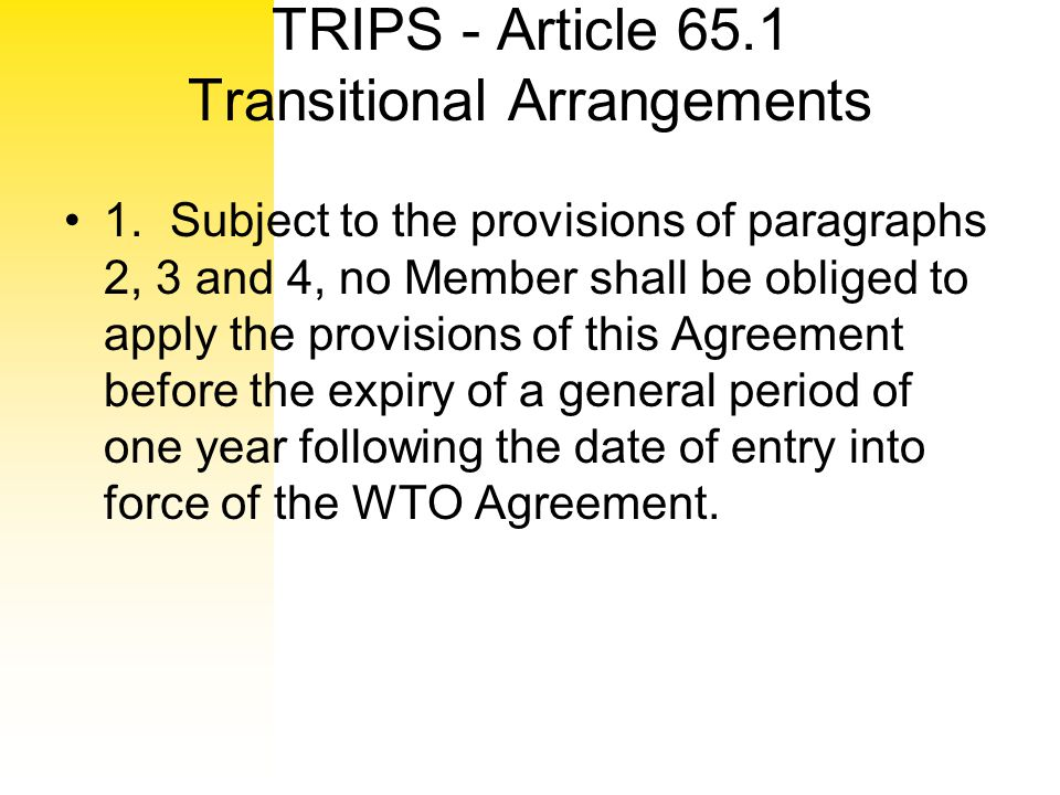 TRIPS - Article 65.1 Transitional Arrangements