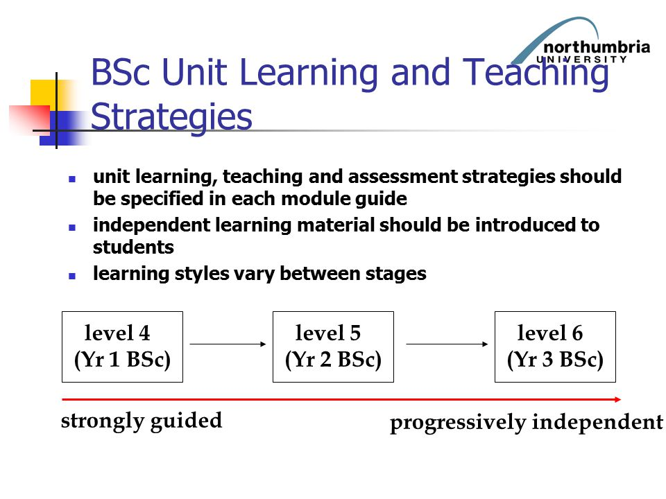 BSc Unit Learning and Teaching Strategies