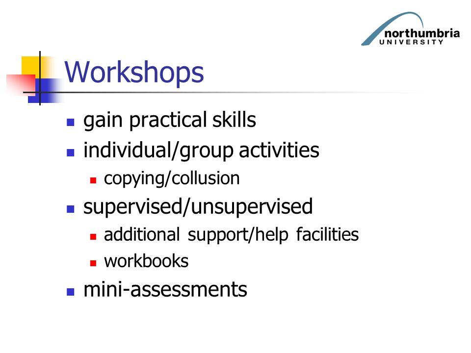 Workshops gain practical skills individual/group activities