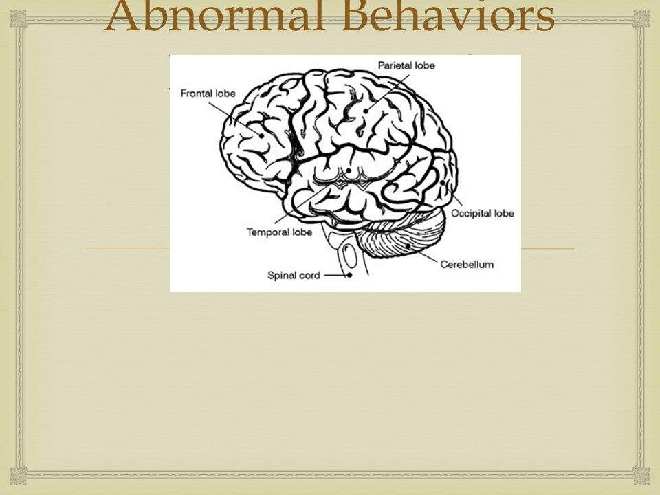 Abnormal Behaviors Perspectives & Diagnoses