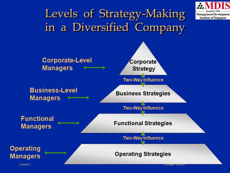 Levels of Strategy-Making in a Diversified Company