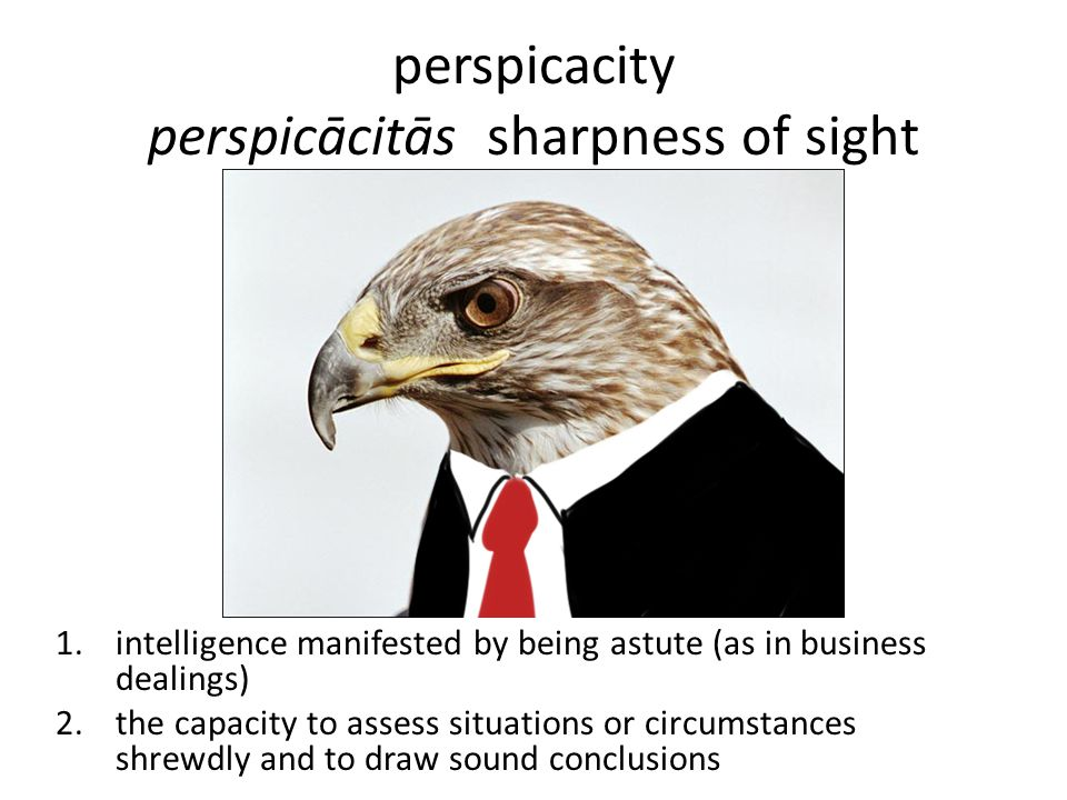 perspicacity perspicācitās sharpness of sight