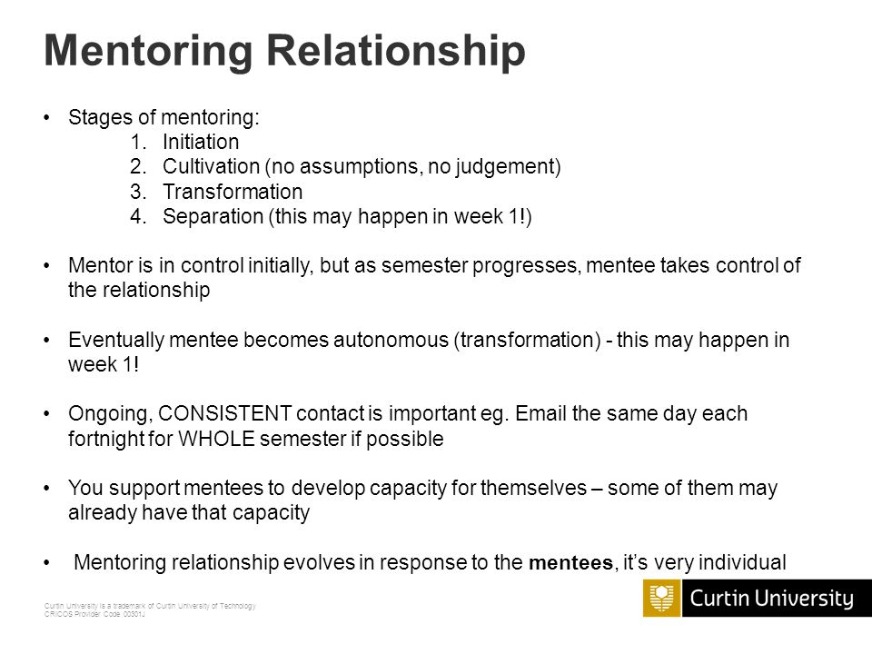 building the mentoring relationship stages