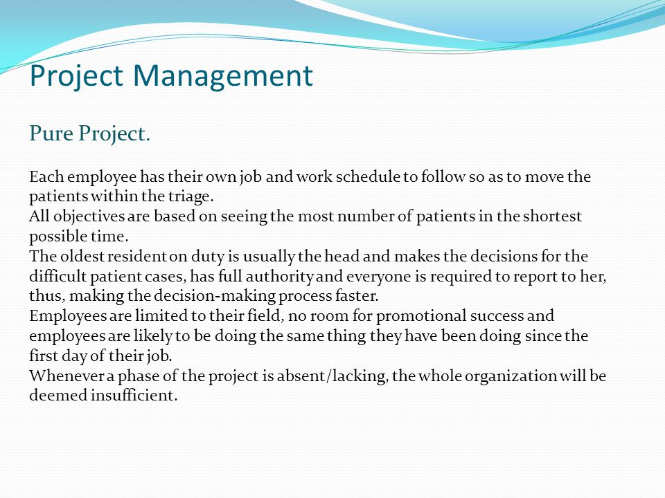 Project Management Pure Project.