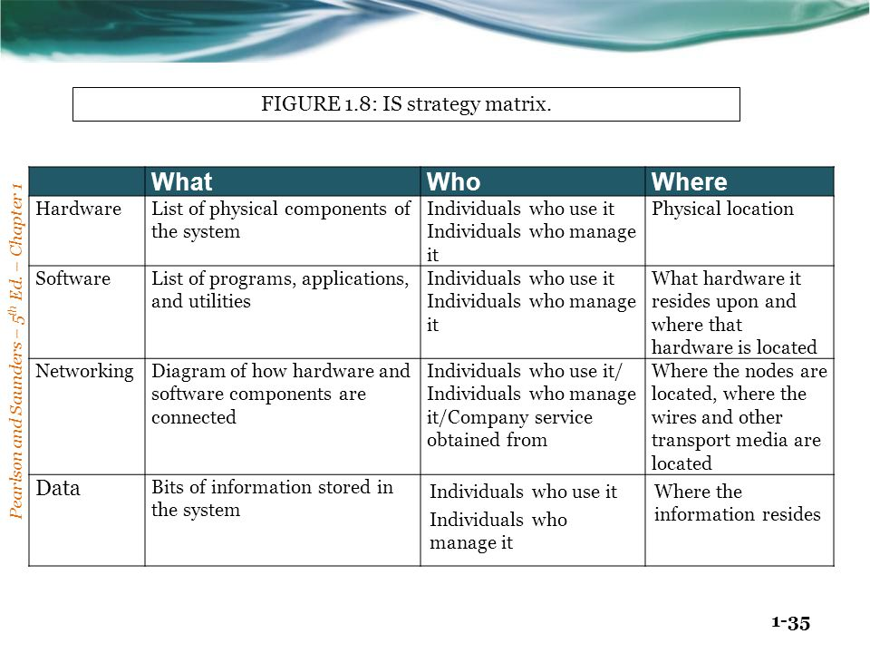 FIGURE 1.8: IS strategy matrix.