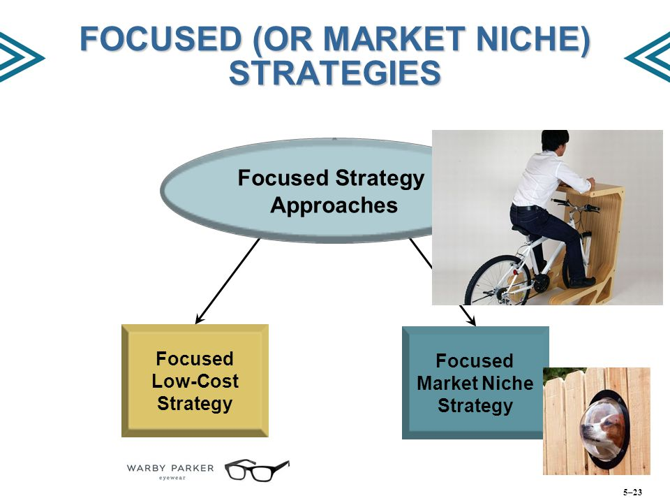 FOCUSED (OR MARKET NICHE) STRATEGIES