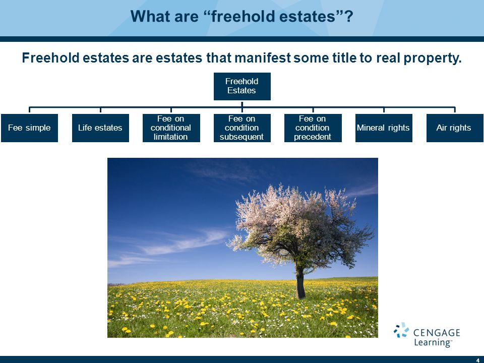 What are freehold estates