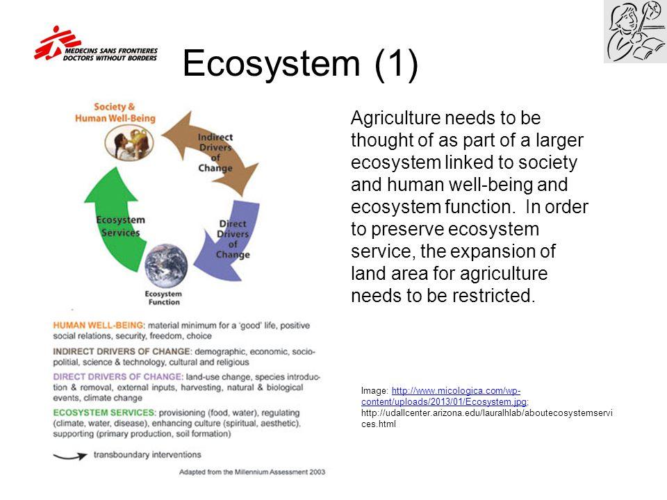 Ecosystem (1)