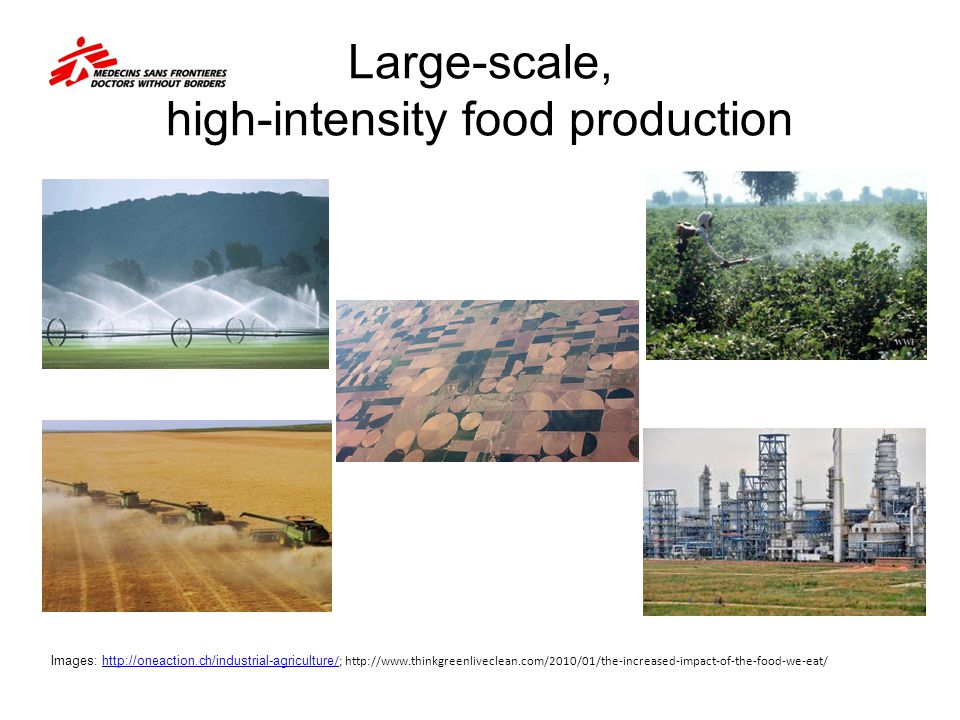 Large-scale, high-intensity food production