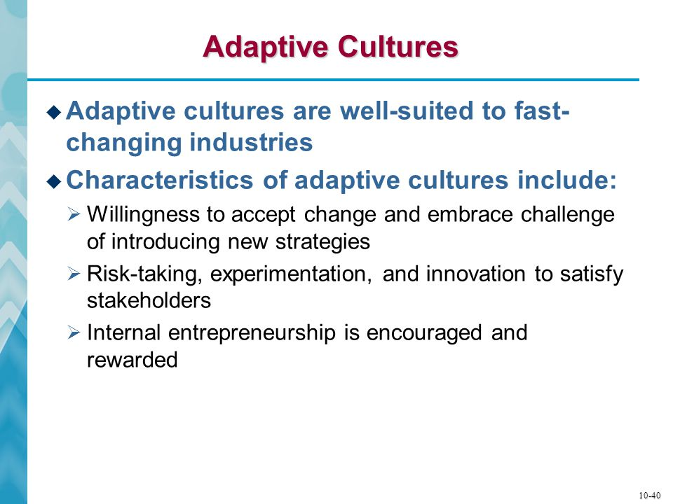 Adaptive Cultures Adaptive cultures are well-suited to fast-changing industries. Characteristics of adaptive cultures include: