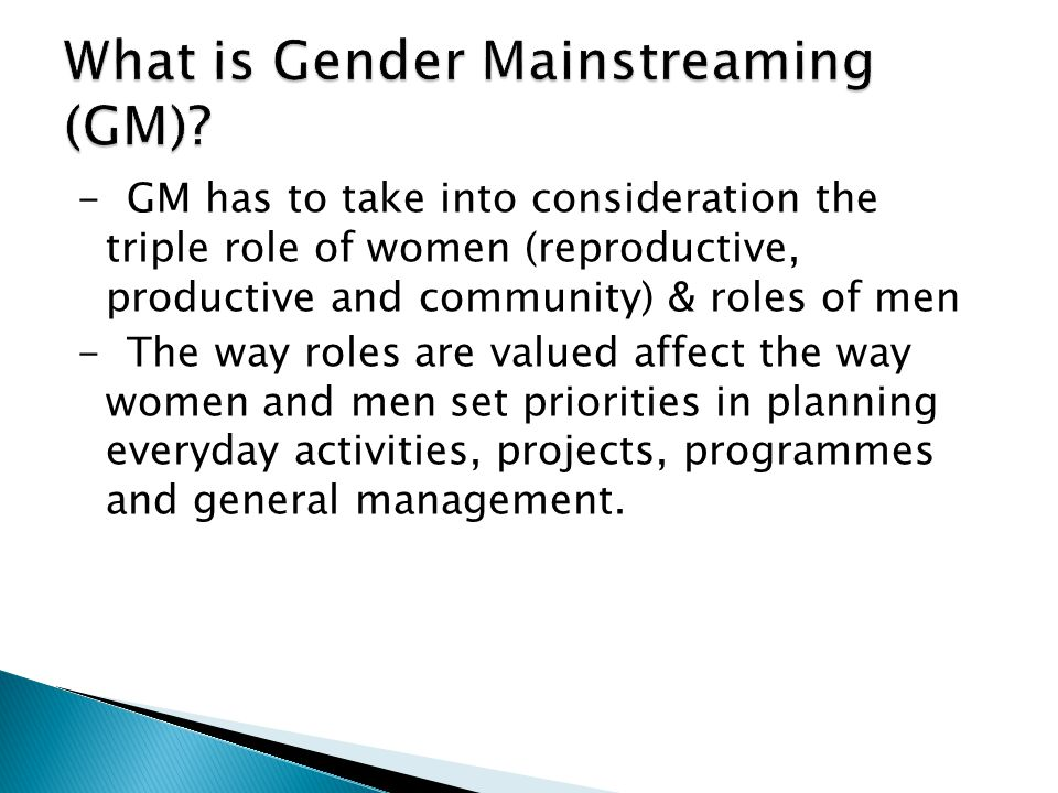 What is Gender Mainstreaming (GM)