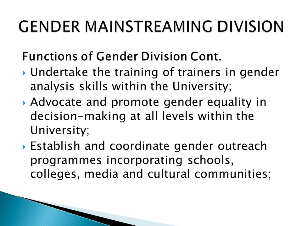 GENDER MAINSTREAMING DIVISION