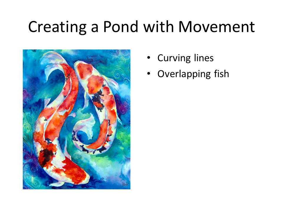 Creating a Pond with Movement