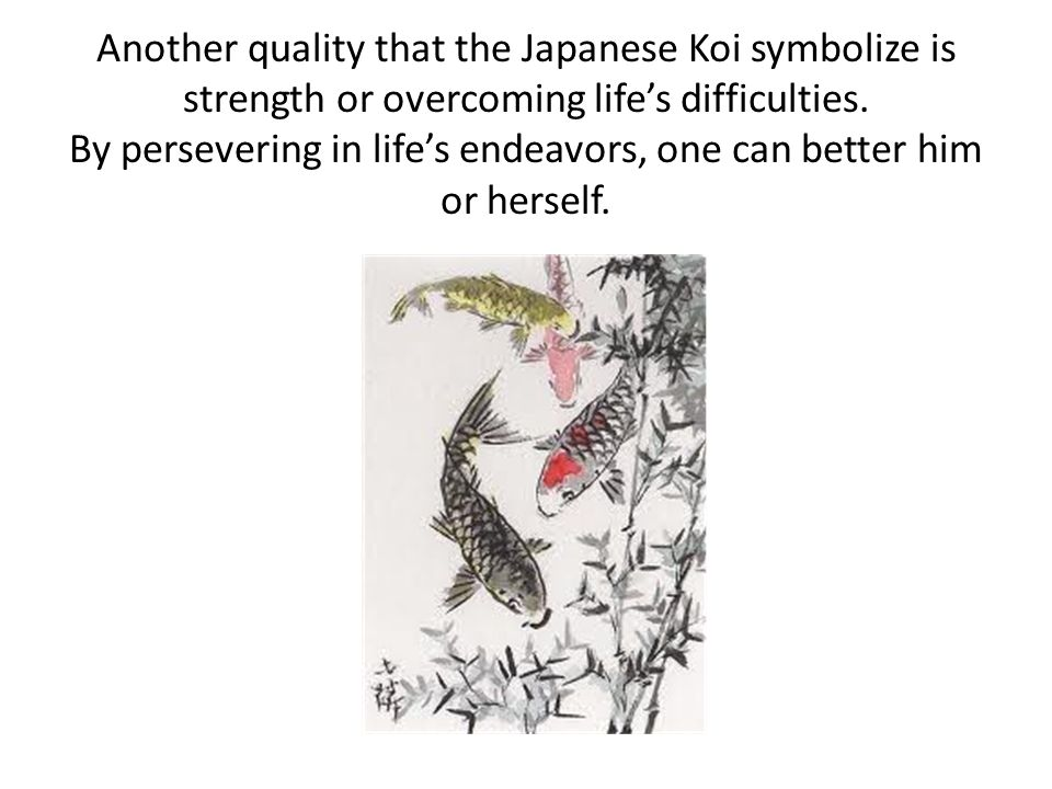 Another quality that the Japanese Koi symbolize is strength or overcoming life's difficulties.