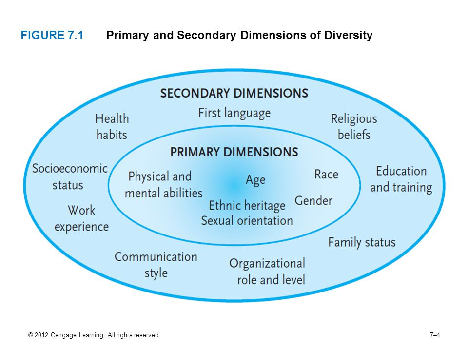 Primary and Secondary Dimensions of Diversity